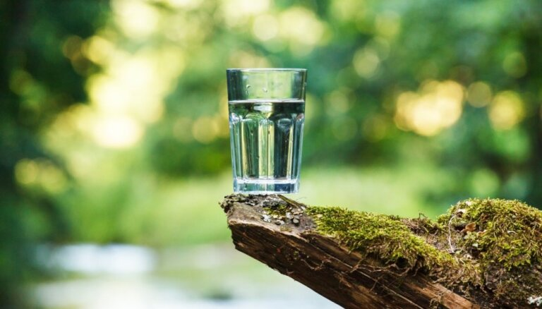 Ūdens lietošanas ABC: cik daudz dzert un kuru labāk izvēlēties