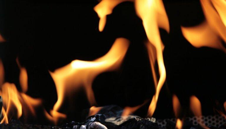"""""""Газпром"""" упрекнул Европу в увеличении выбросов СО2"""