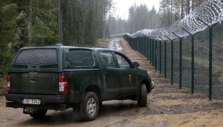 Raidījums: Uz Krievijas robežas nelikumīgi izcirsti desmitiem hektāru meža