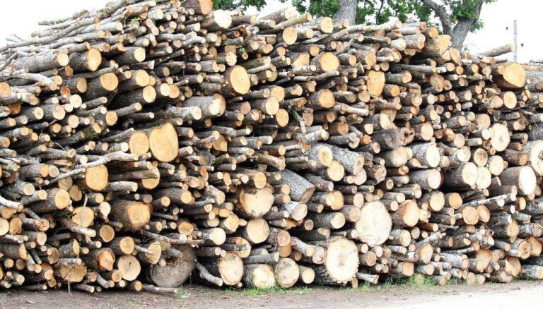 Погранохрана вернет 120 000 евро, утерянные при незаконном вывозе деревьев с восточной границы