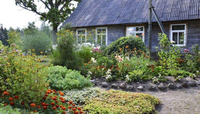 Foto: Šīs vasaras krāšņākie un sakoptākie Kuldīgas dārzi un sētas