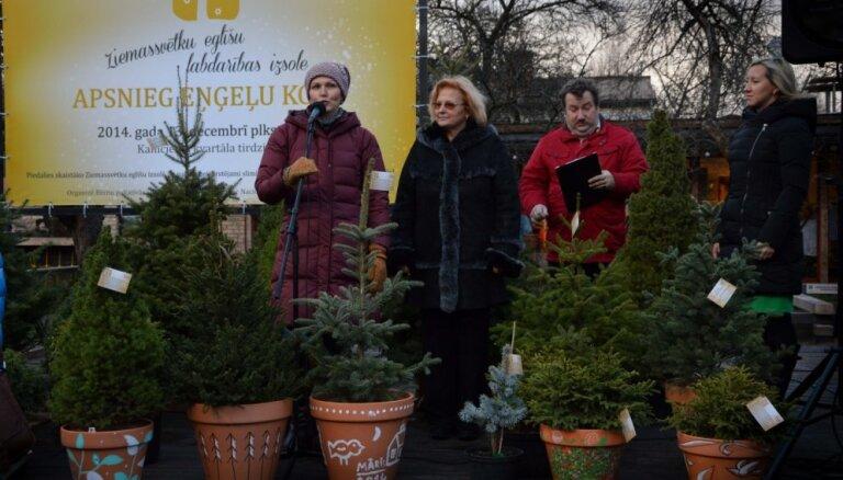 Ar māla podu apgleznošanas darbnīcu sāks labdarības akciju 'Apsnieg eņģeļu koks'
