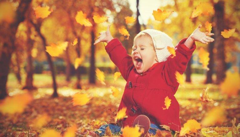 """В полном разгаре """"золотая осень""""! Где ею насладиться?"""