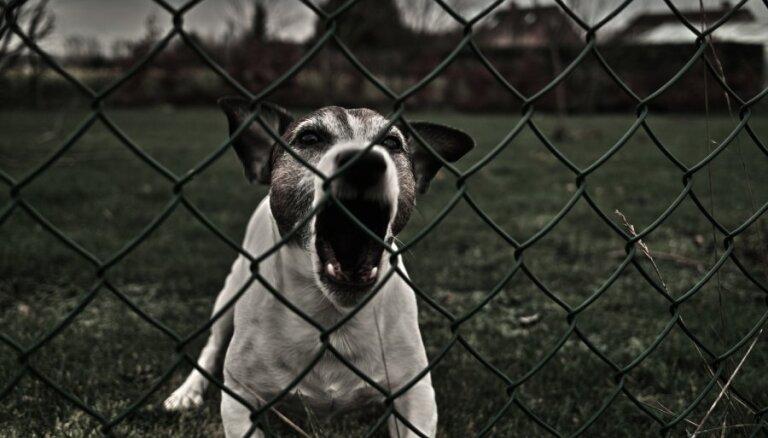 Mediķi: suns bieži ir šķērslis palīdzības sniegšanai izsaukumā