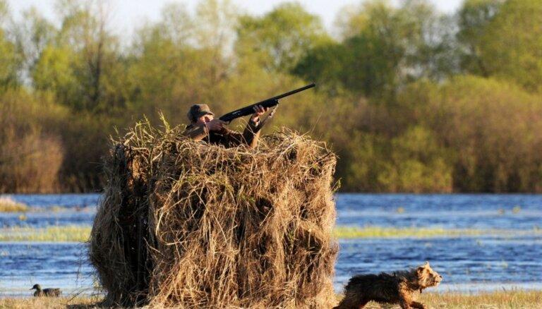 Вступили в силу поправки, разрешающие охотиться с оружием с 16 лет