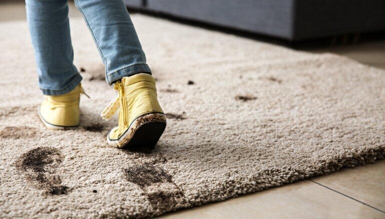 Mājās gandrīz katram: līdzekļi, kas palīdzēs iztīrīt paklāja traipus