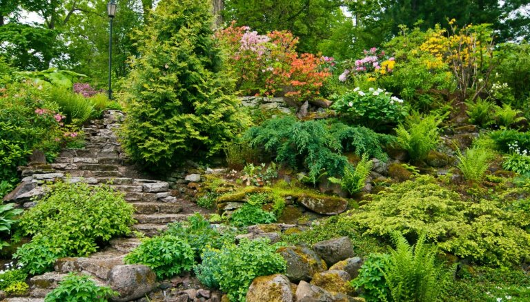 11 dizaina risinājumi, ja māja vai dārzs atrodas uzkalniņā
