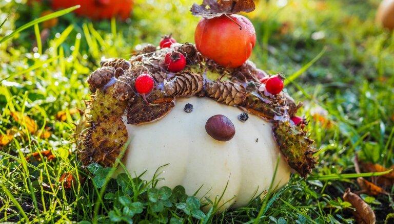 Foto: Krotes Kronvalda Ata pamatskolas bērnu veidotās dārzeņu figūras