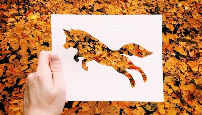 Foto: Mākslinieks krāsu vietā izmanto lapas, akmeņus un ziedus