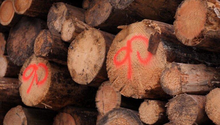 Pērnā gada otrajā pusē skujkoku apaļkokiem cenu kāpums, lapu kokiem – kritums