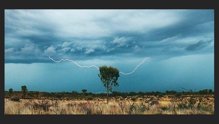 """ФОТО: Как муж и жена смогли """"обыграть"""" Туристическое агентство Тасмании на их поле"""