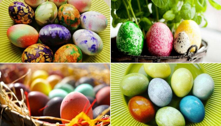 Krāsojam olas: ar dabas veltēm, virtuves izejvielām un mājas aptieciņas krājumiem