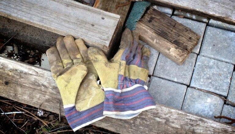 Latvijā strauji augusi imigrantu nelegālā nodarbināšana un krāpšanās ar algām