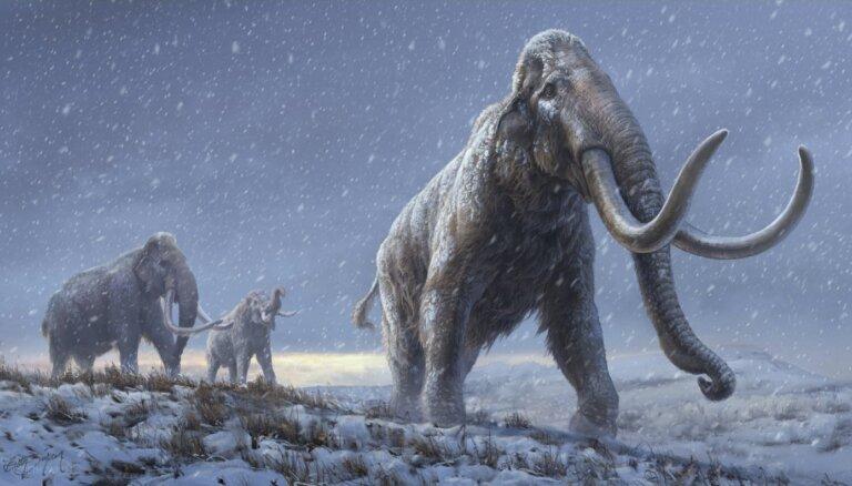 Pirmo reizi izdevies izpētīt vairāk nekā miljons gadu senu DNS