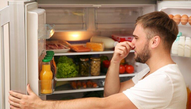Tautas metodes, kā novērst nepatīkamo smaku ledusskapī