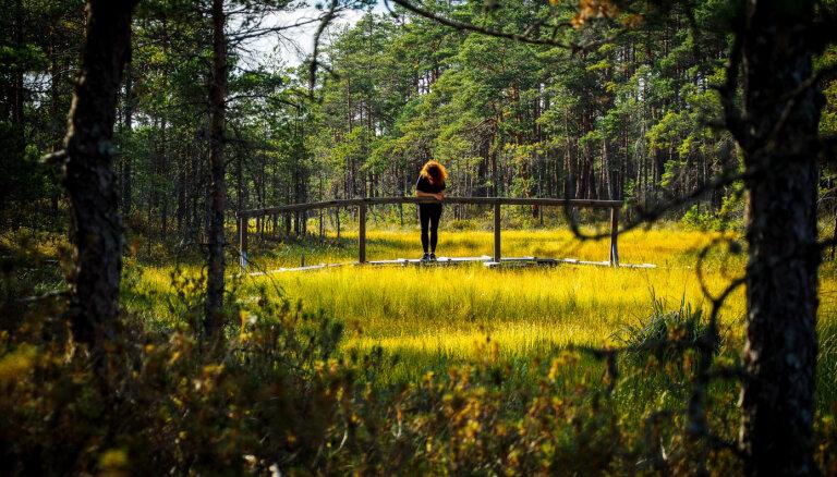 Top 10: vietas, kur šovasar izbaudīt Latvijas dabas burvību un spēku