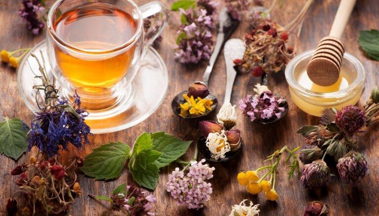 Septiņas zāļu tējas mājas aptieciņai un atspirdzinājumam