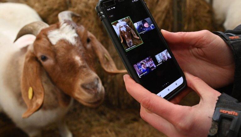 Mobilo telefonu sarunas visbiežāk noklausās policija un specdienesti