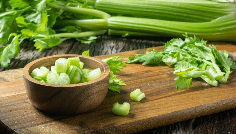 Kraukšķīgais veselības kāts selerija. Kas vērtīgs zaļajā dārzenī