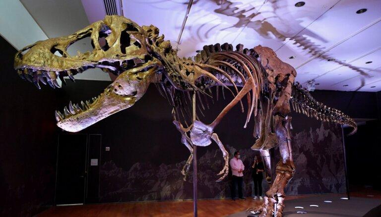 Bagātiem paleontoloģijas faniem iespēja tikt pie sava tiranozaura