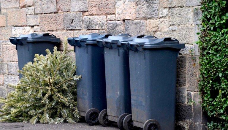 Kur pēc svētkiem Rīgā likt Ziemassvētku eglīti?