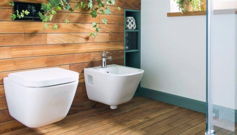 Atsvaidzini vannasistabu: sešas radošas vietas telpaugu novietošanai
