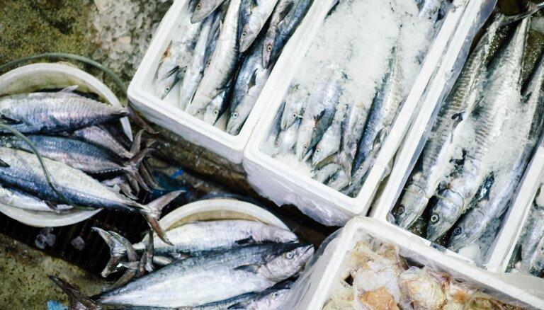 Ieskaties acīs un novērtē labo smaržu jeb kas jāzina par zivju pirkšanu