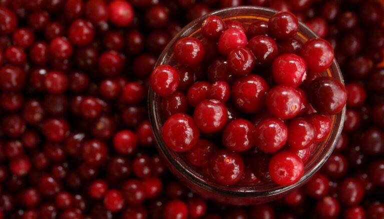Latvijas Augļkopju asociācija: salnu dēļ šogad būs mazāka augļu un ogu raža