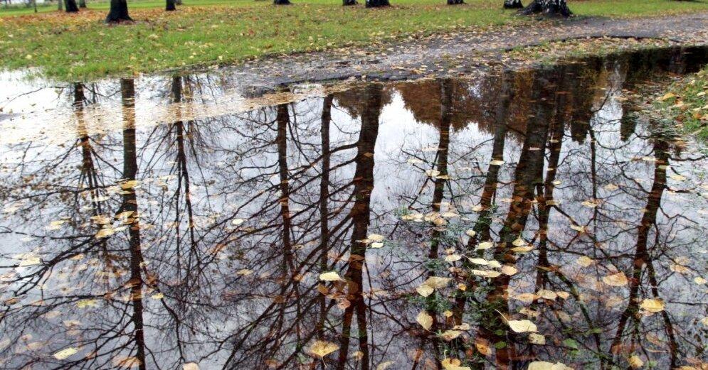 Окончание засухи в Латвии не предвидится: сохраняется высокая пожароопасность