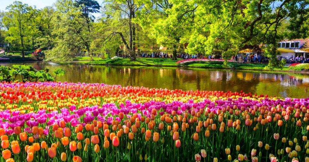 Iepl no opavasar braucienu uz pasaules kr ko d rzu for Immagini sfondo desktop primavera