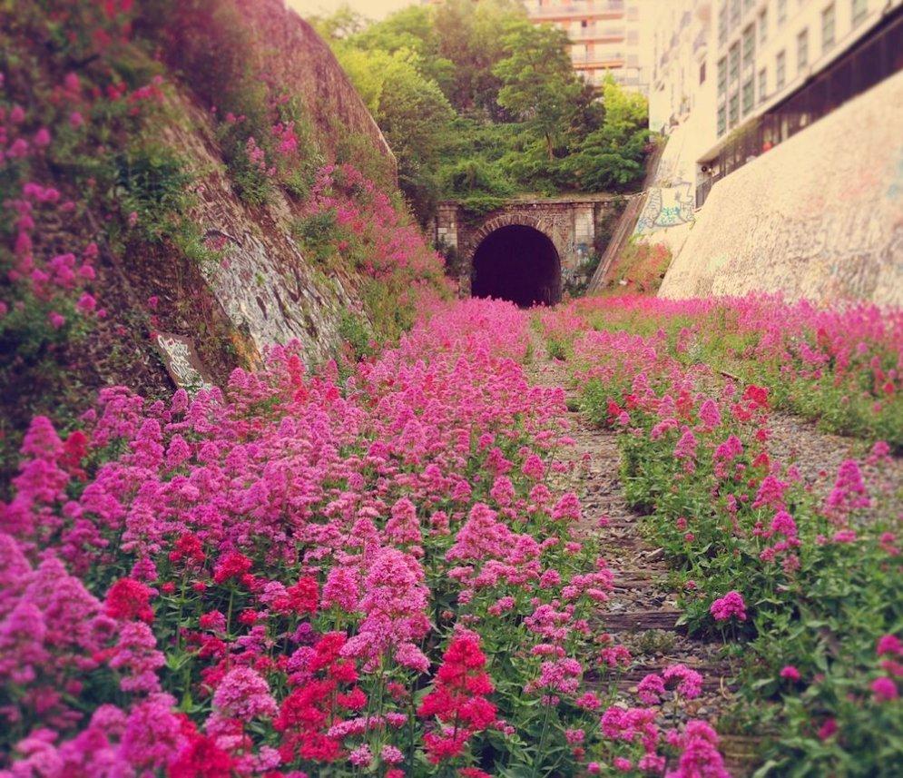 ФОТО: Прогулка по тайной парижской железной дороге, заброшенной с 1934 года