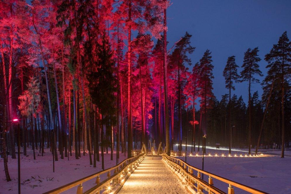 Gaismas pieliets koka tilts – laboratorija Tērvetē