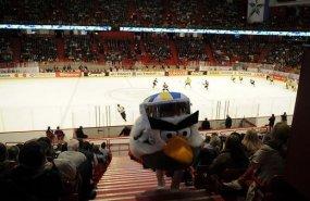 Hokejs 2013