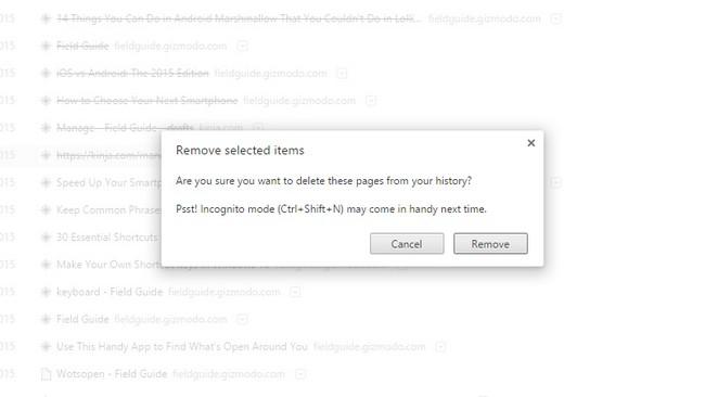 Удалить из интернета все порнографические сайты