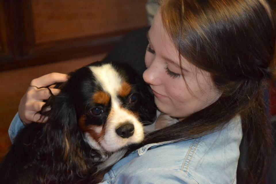 Как воспитывают собак-докторов?