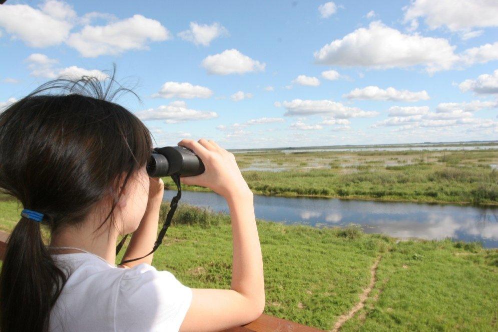 Populārākās putnu vērošanas vietas Latvijā